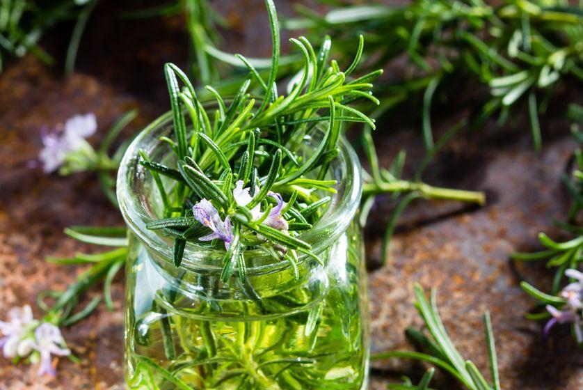 Resultado de imagem para pinterest ervas e plantas indicações na aromaterapia